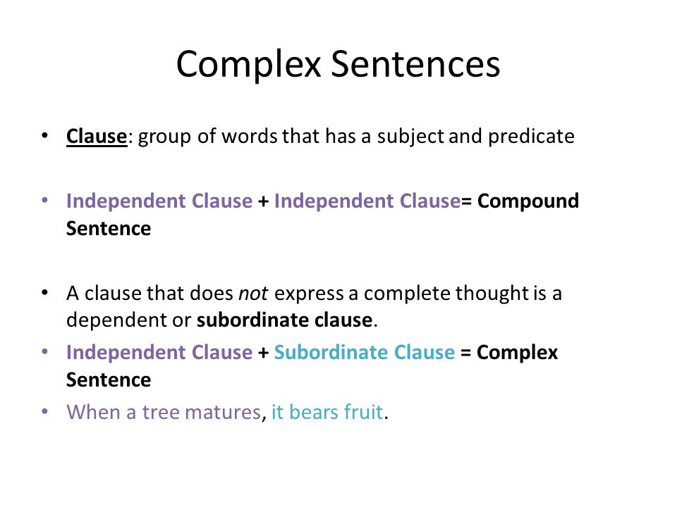 Complex Sentences Clause: group of words that has a subject and predicate. Independent Clause + Independent Clause= Compound Sentence.