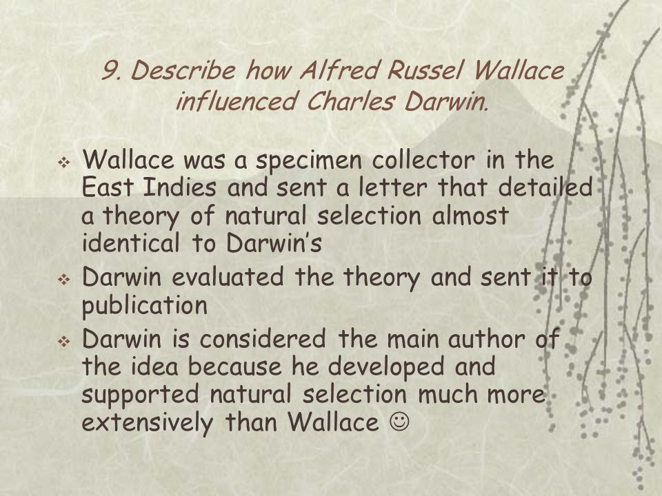 darwin and wallace relationship quiz