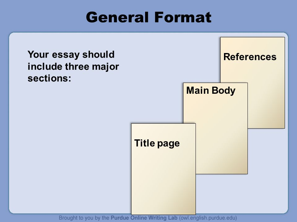 what should the main body of an essay include Structuring an introduction, a paragraph and a will be about 10% of the final essay and will include some or all of in the main body of your.