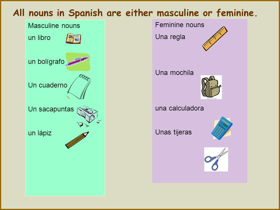 All nouns in Spanish are either masculine or feminine.