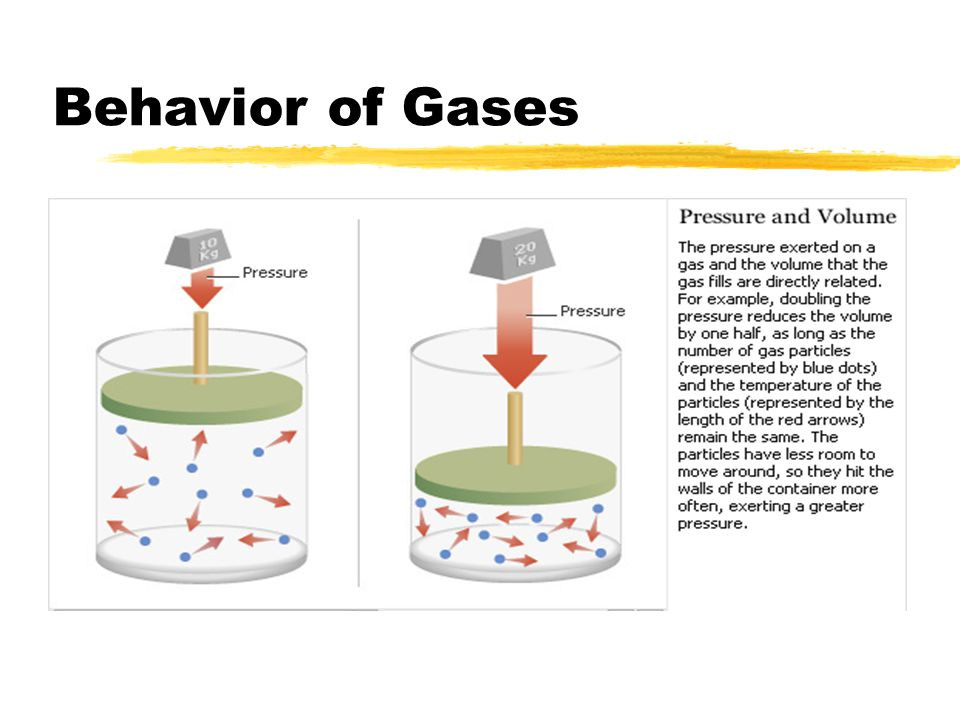 behavior of gases Gases that have a lower molar mass effuse and diffuse at a faster rate than gases that have a higher molar mass scottish chemist thomas graham (1805-1869) studied the rates of effusion and diffusion of gases.