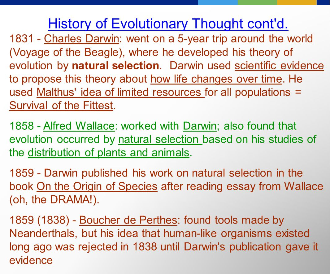 the history of human evolution essay Human evolution essay - the central purpose of this essay is to critically discuss the importance of understanding human evolution and the history of psychology for the modern psychologist.