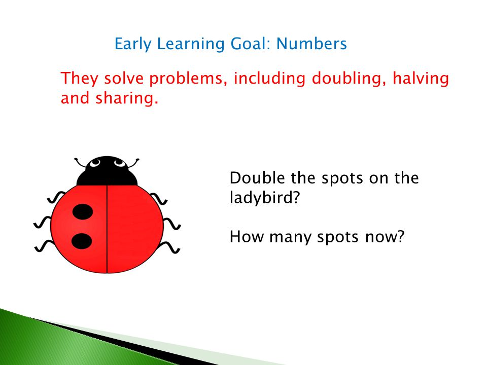 Early Learning Goal: Numbers
