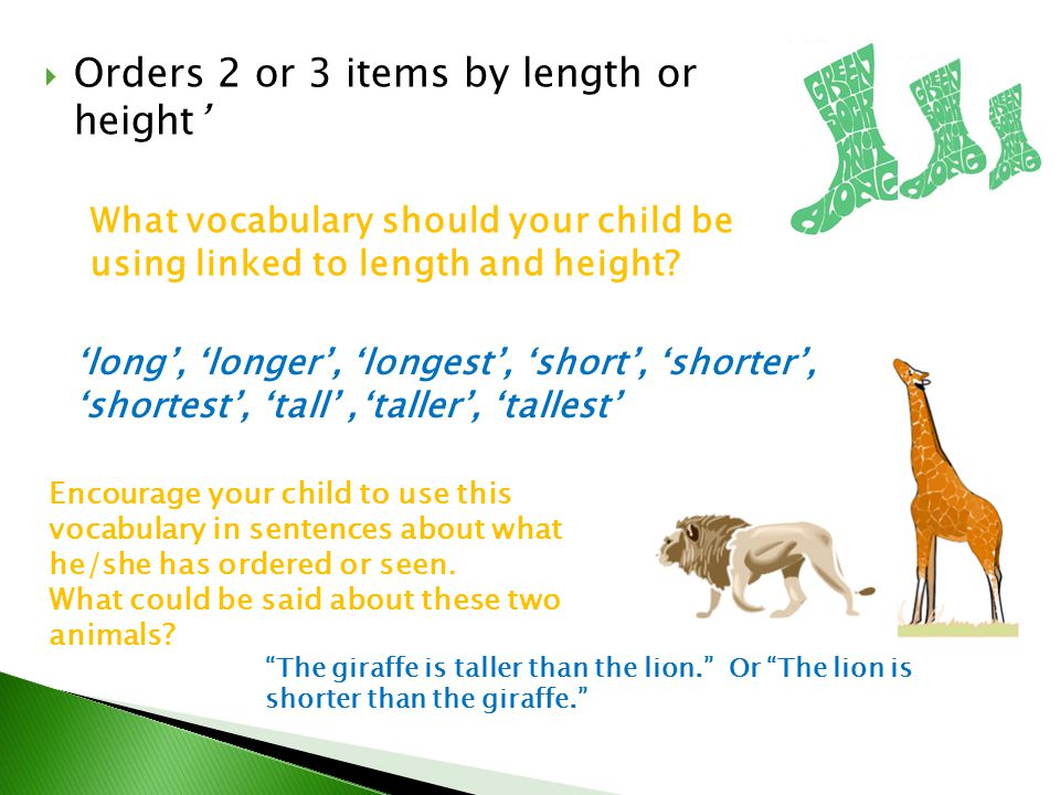 Orders 2 or 3 items by length or height'