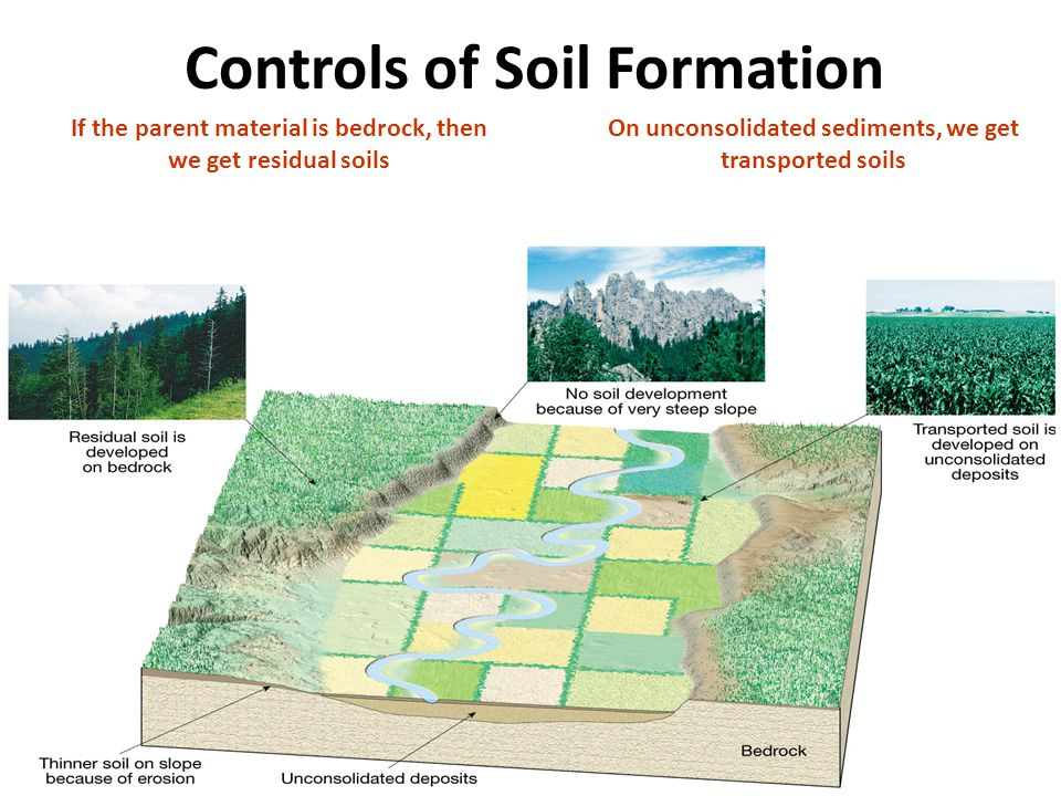 The four components of soil ppt video online download for Soil formation