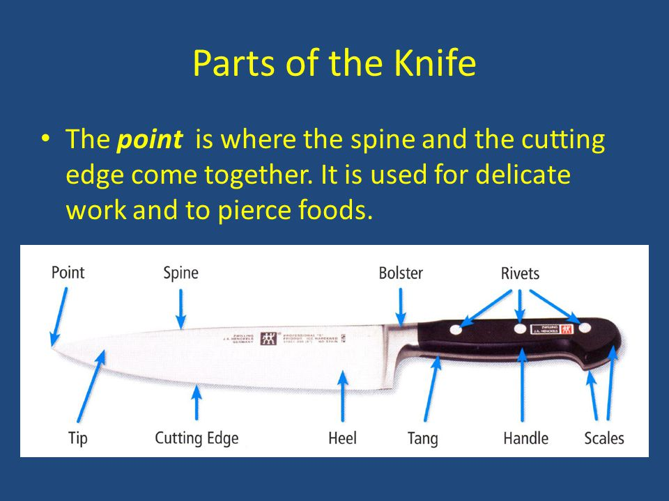 Parts of the Knife The point is where the spine and the cutting edge come together.