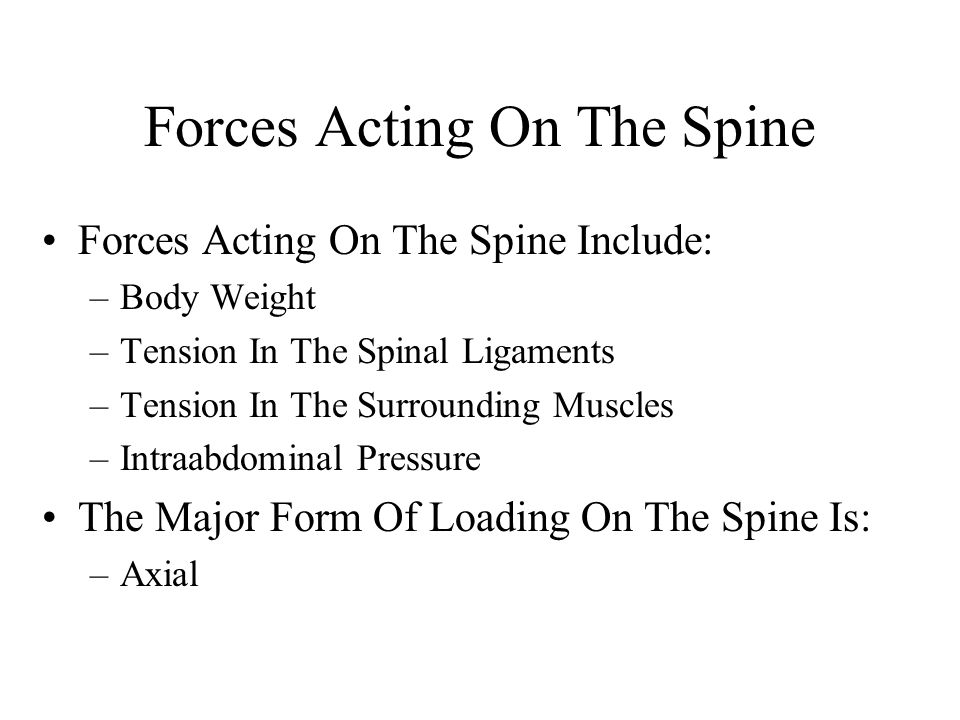 Forces Acting On The Spine