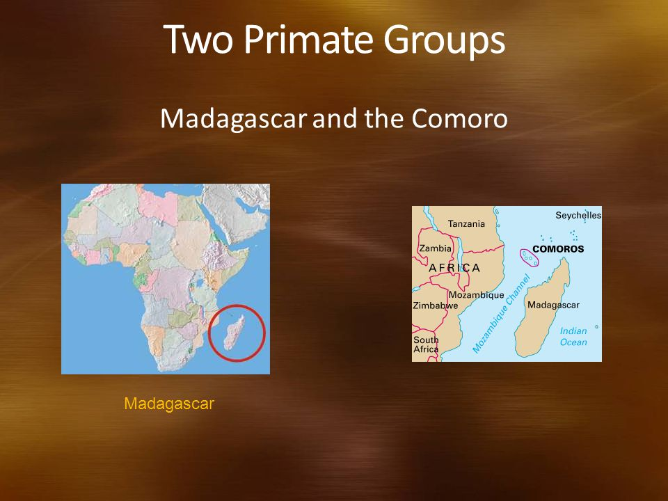 Madagascar and the Comoro