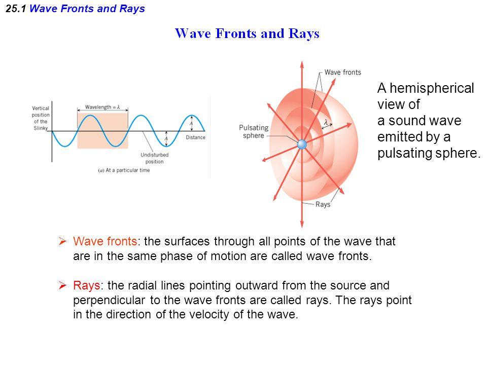 A hemispherical view of a sound wave emitted by a pulsating sphere.