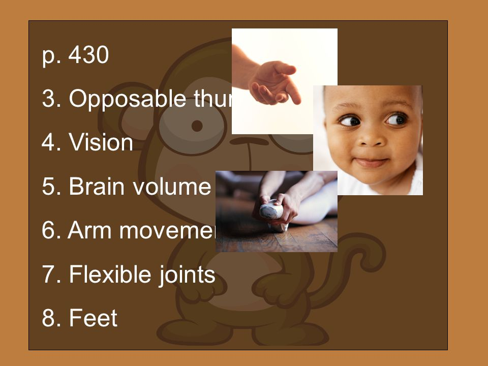 p Opposable thumbs 4. Vision 5. Brain volume 6. Arm movement 7. Flexible joints 8. Feet