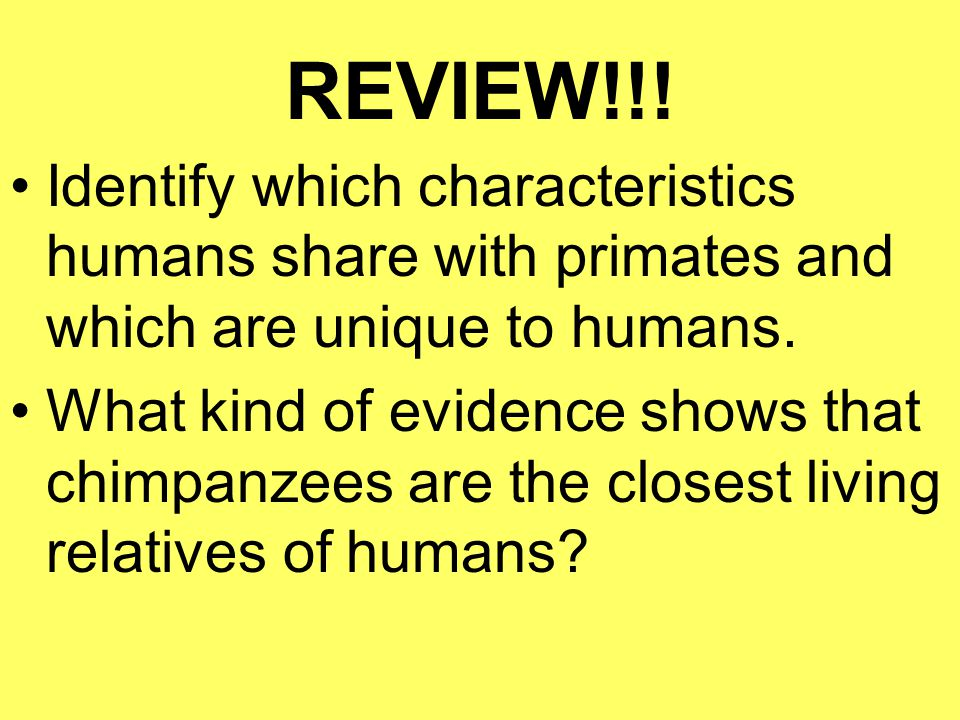 REVIEW!!! Identify which characteristics humans share with primates and which are unique to humans.