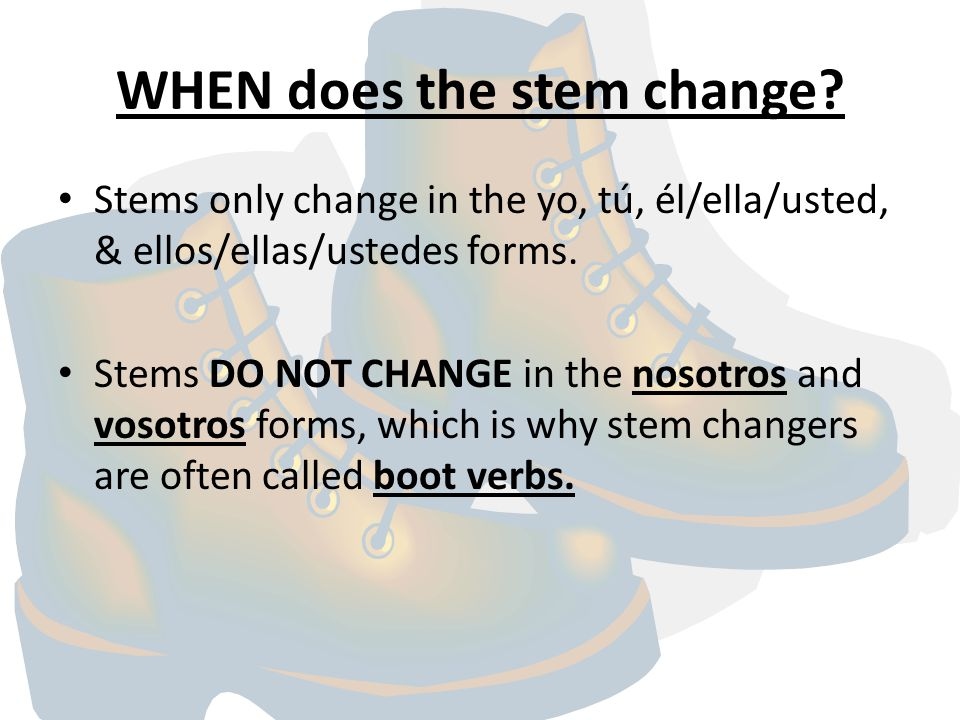 WHEN does the stem change