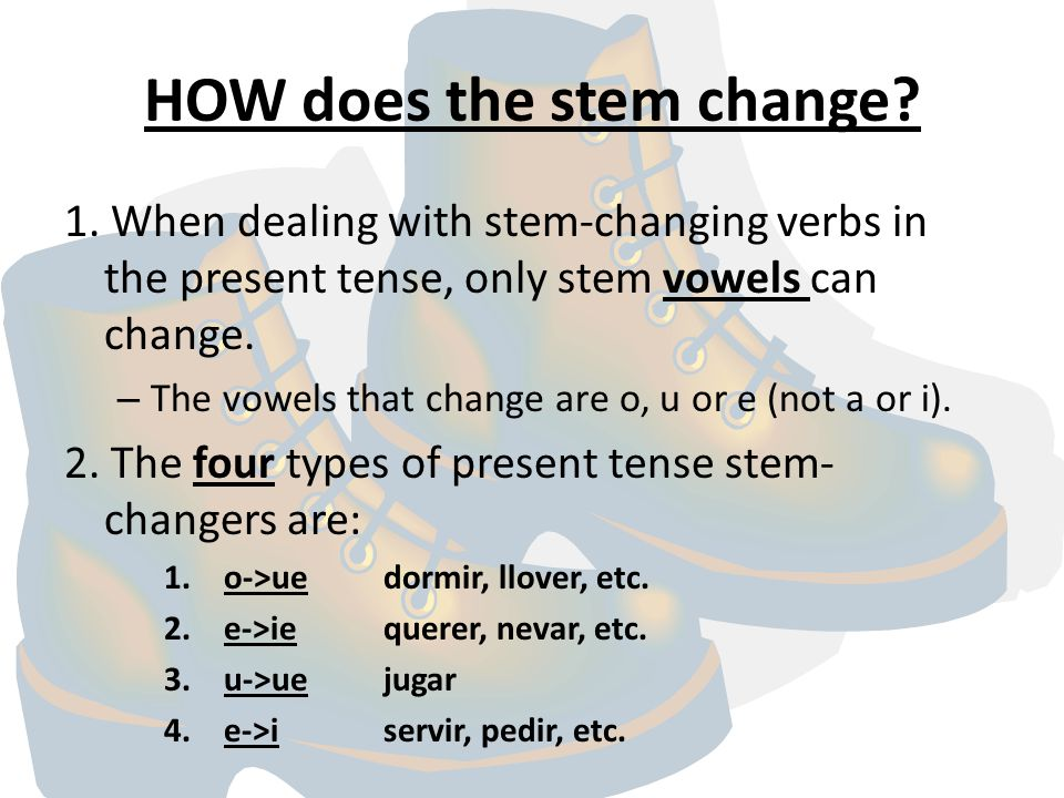 HOW does the stem change