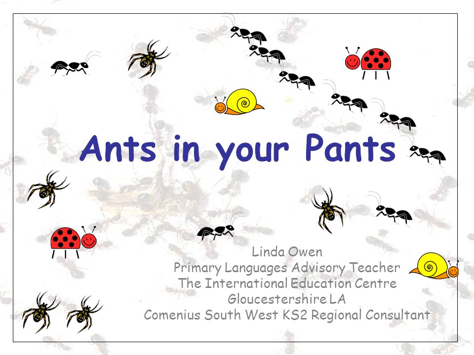 Ants in your Pants Linda Owen Primary Languages Advisory Teacher