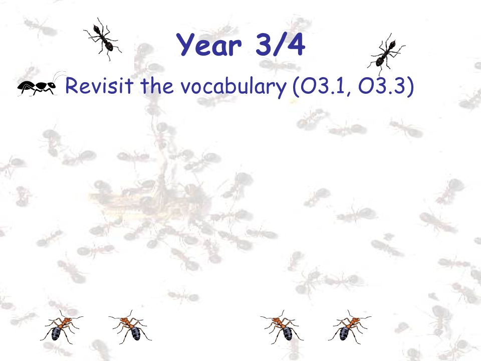 Year 3/4 Revisit the vocabulary (O3.1, O3.3)