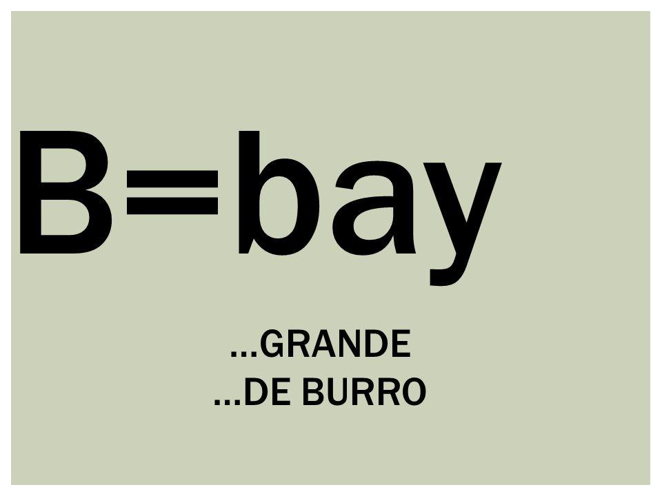 B=bay …GRANDE …DE BURRO