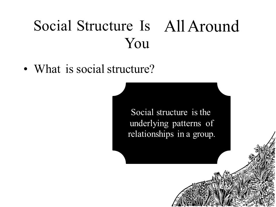 social structure of the society Social organization based on established patterns of social interaction between different relationships (such as those between parents and children, teachers and students, employers and employees), regulated through accepted norms and shared values.