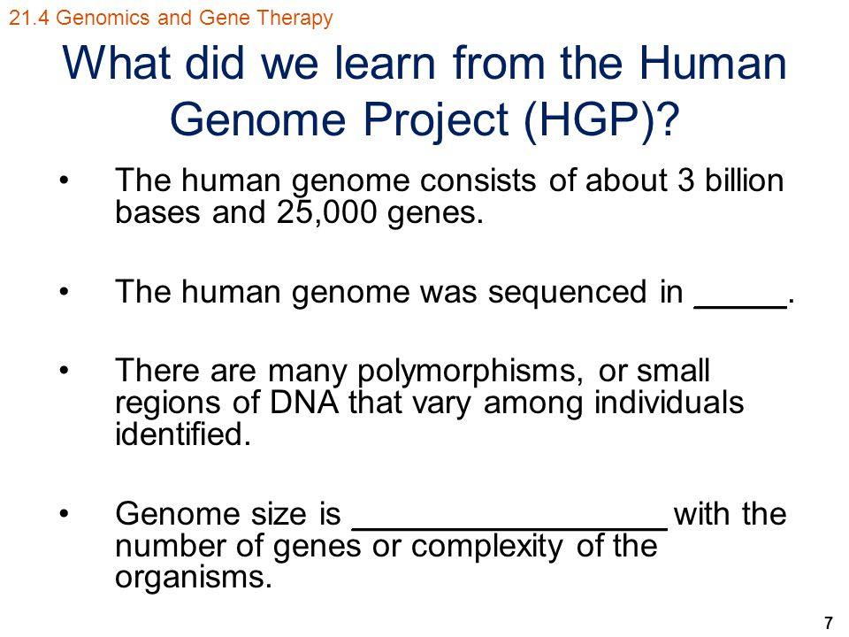 what is the human genome project