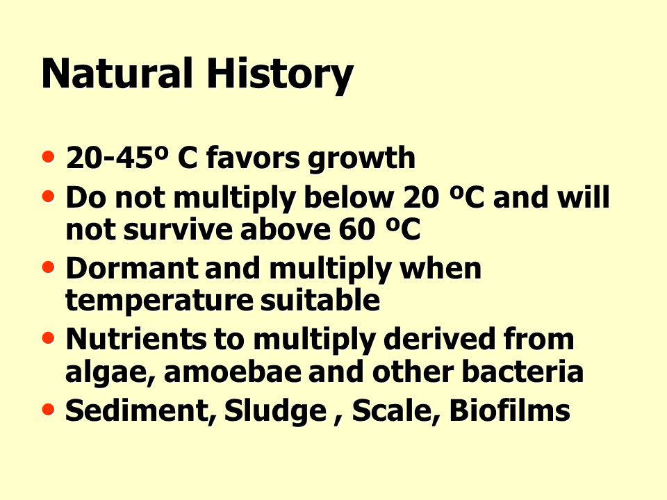 Natural History 20-45º C favors growth