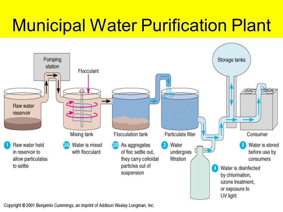 Is Dechlorination Required For Drinking Water