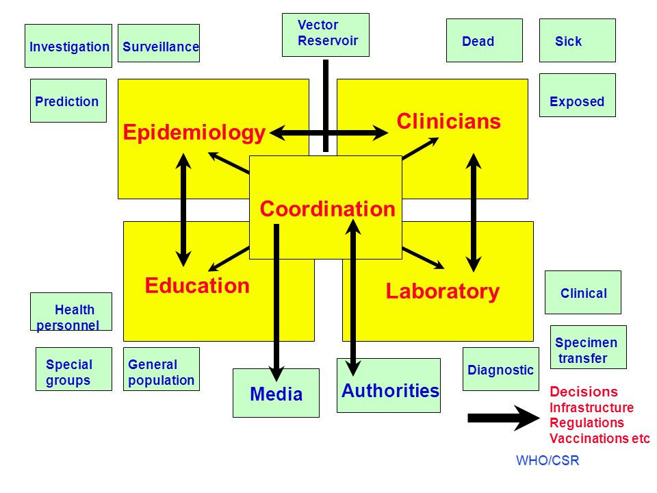 Clinicians Epidemiology Coordination Education Laboratory Authorities
