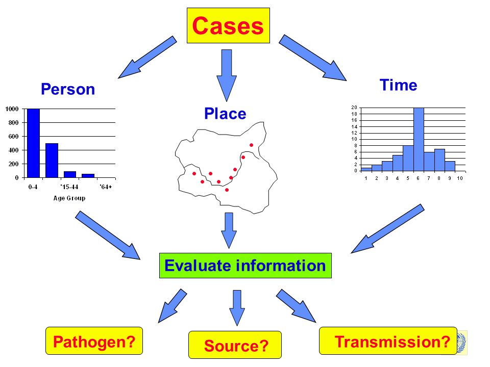 Cases Time Person Place Evaluate information Pathogen Transmission