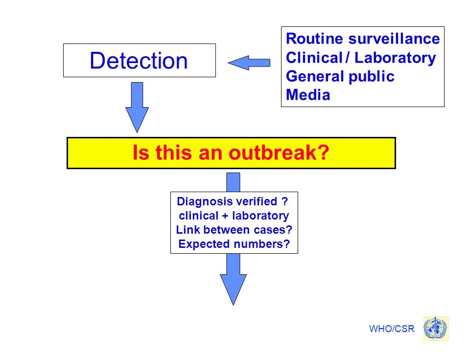 Detection Is this an outbreak Routine surveillance