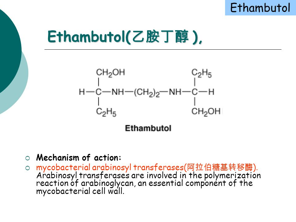 Antimycobacterial Drugs (抗分枝杆菌药) - ppt download