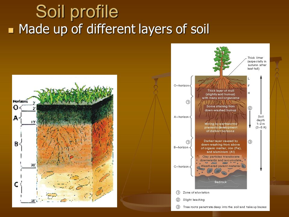 The nature of soil ms scerra ppt video online download for Different uses of soil
