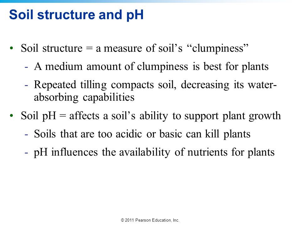 Soil structure and pH Soil structure = a measure of soil's clumpiness A medium amount of clumpiness is best for plants.