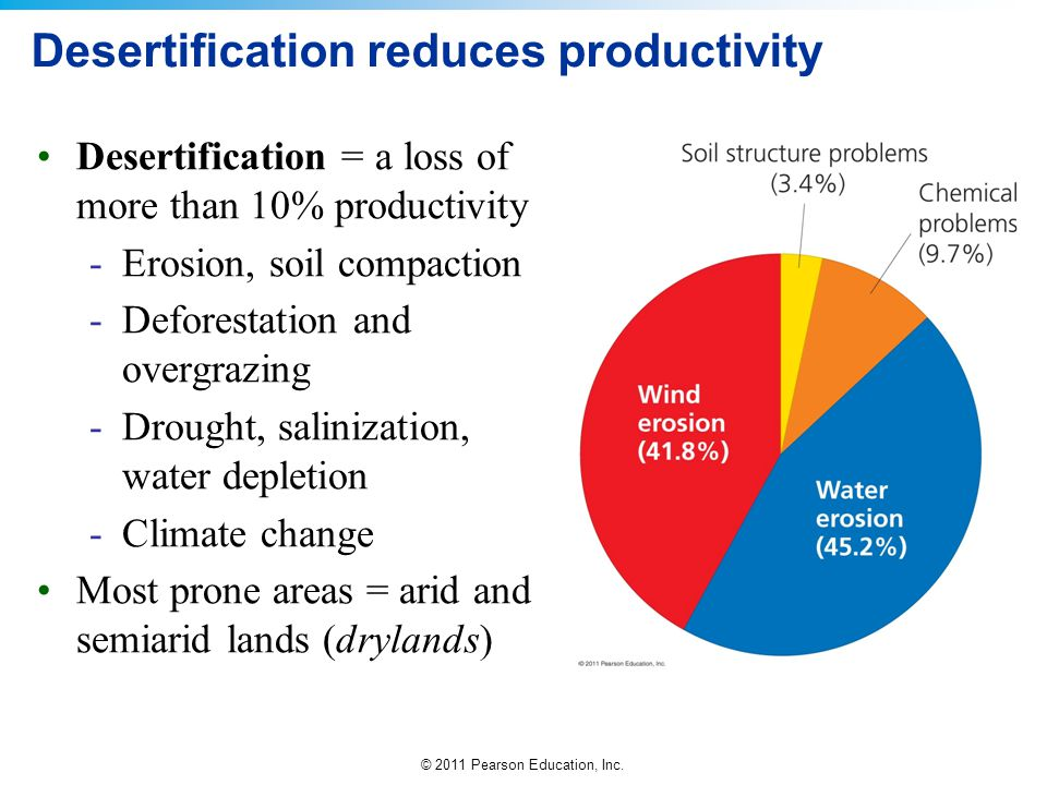 Desertification reduces productivity