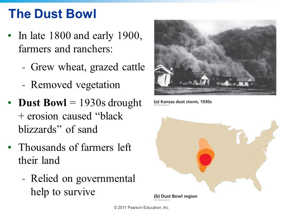 The Dust Bowl In late 1800 and early 1900, farmers and ranchers: