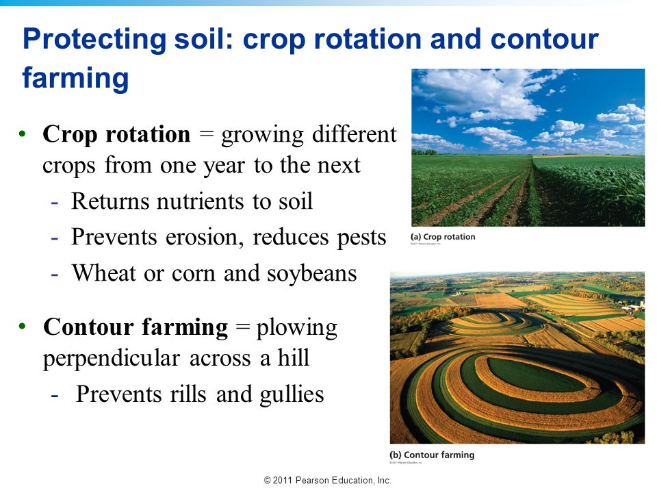 Protecting soil: crop rotation and contour farming