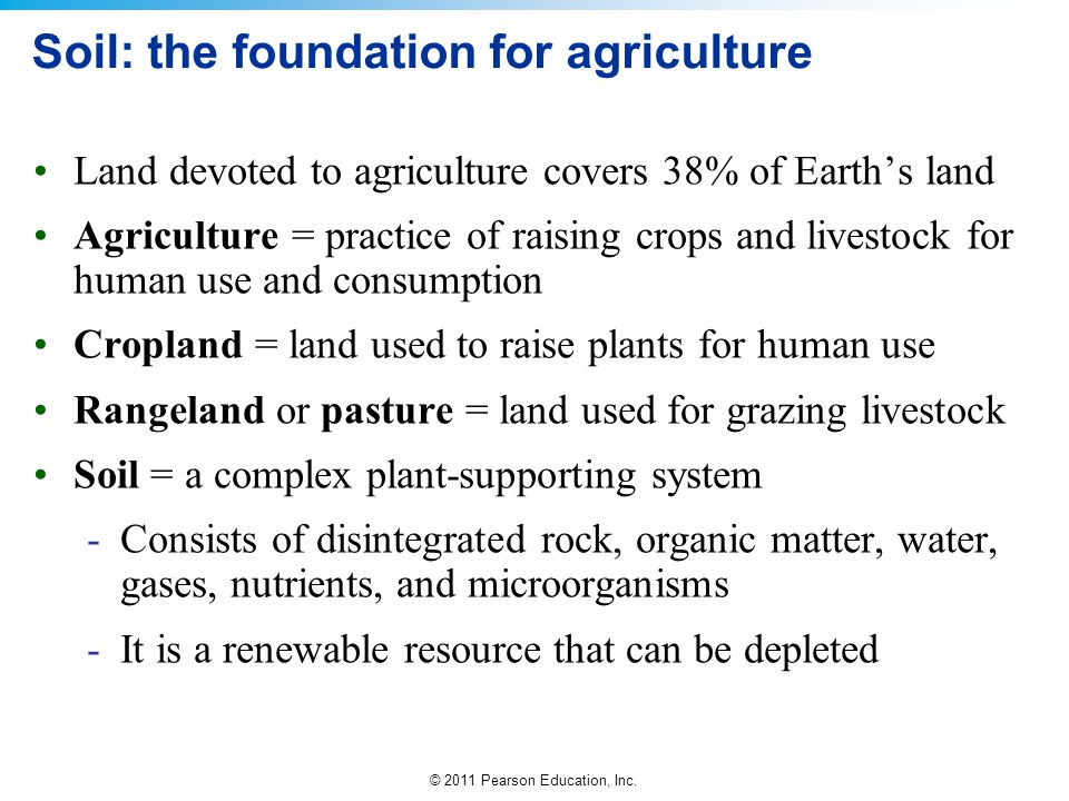 Soil: the foundation for agriculture