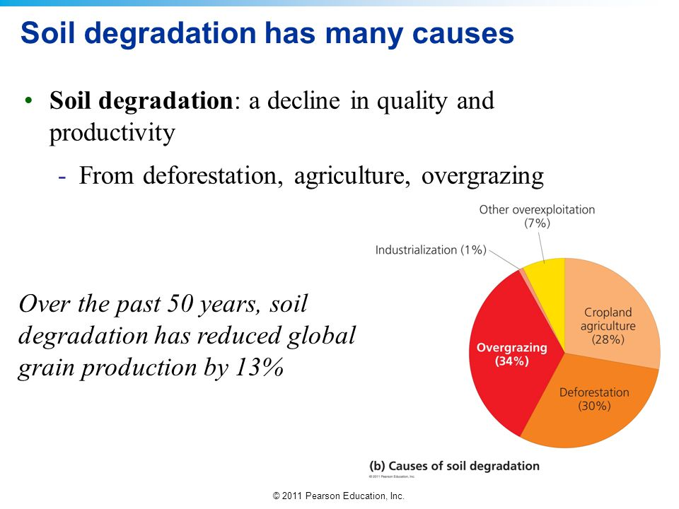 Soil degradation has many causes