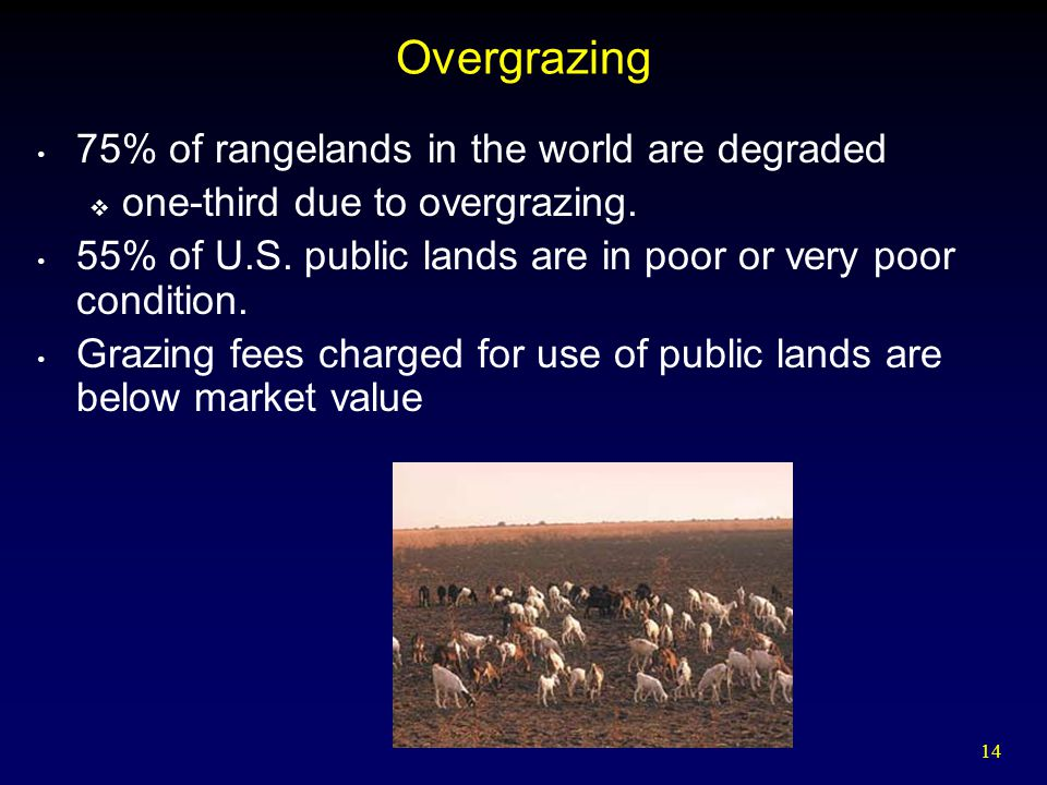 Overgrazing 75% of rangelands in the world are degraded
