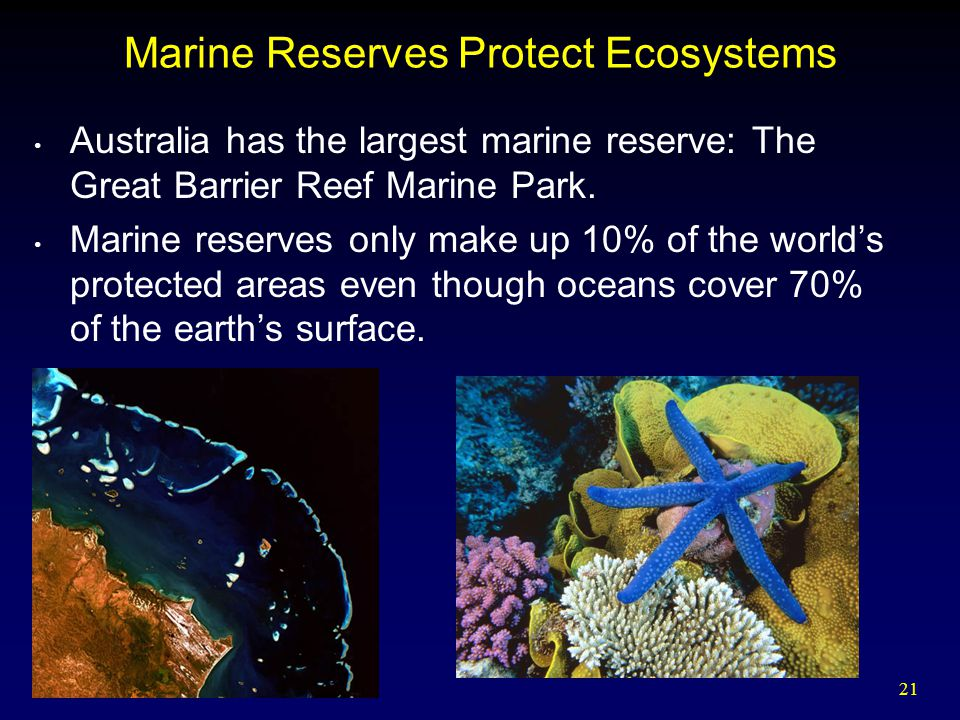 Marine Reserves Protect Ecosystems