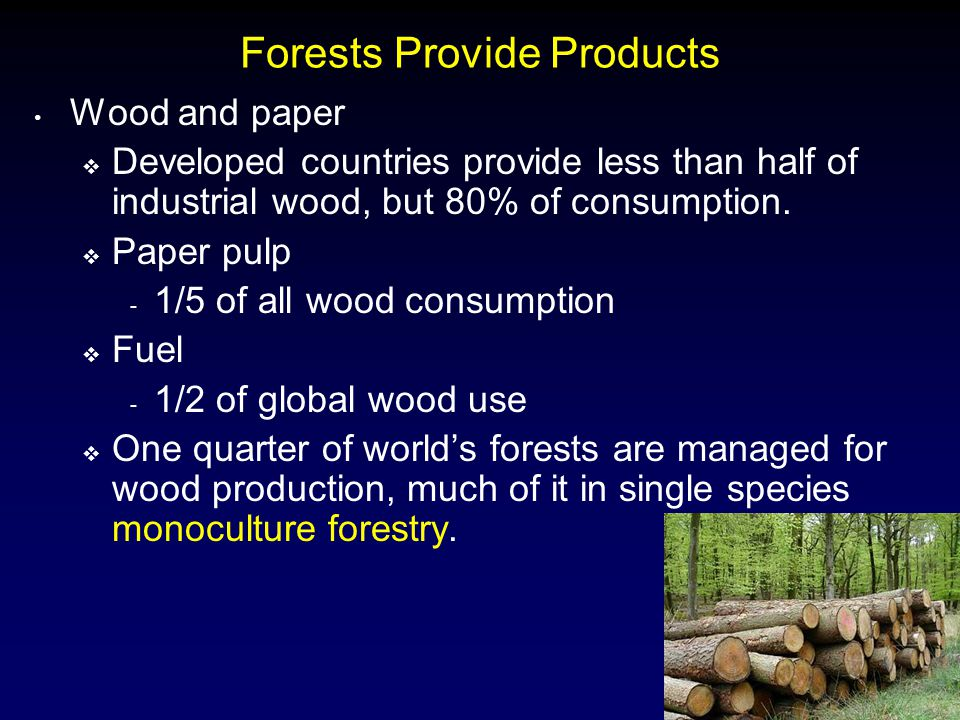 Forests Provide Products