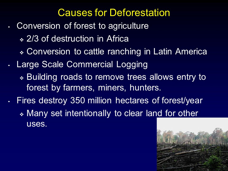 Causes for Deforestation