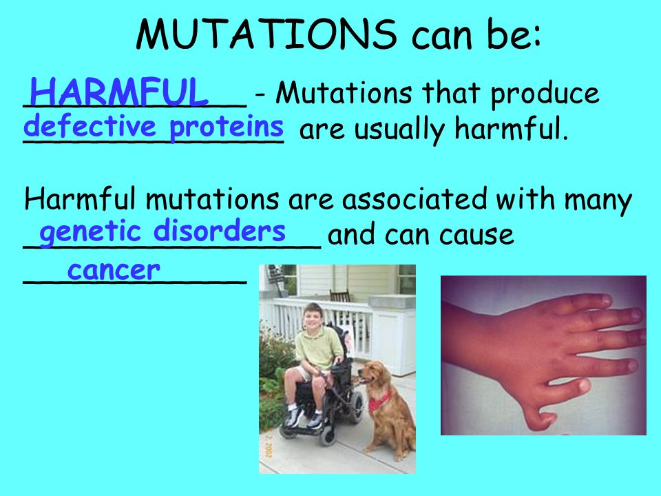MUTATIONS can be: HARMFUL