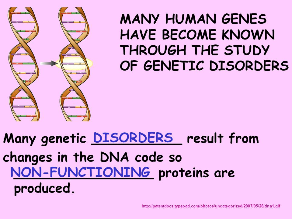 Many genetic ___________ result from