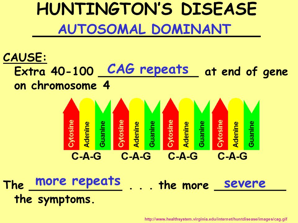 HUNTINGTON'S DISEASE ______________________