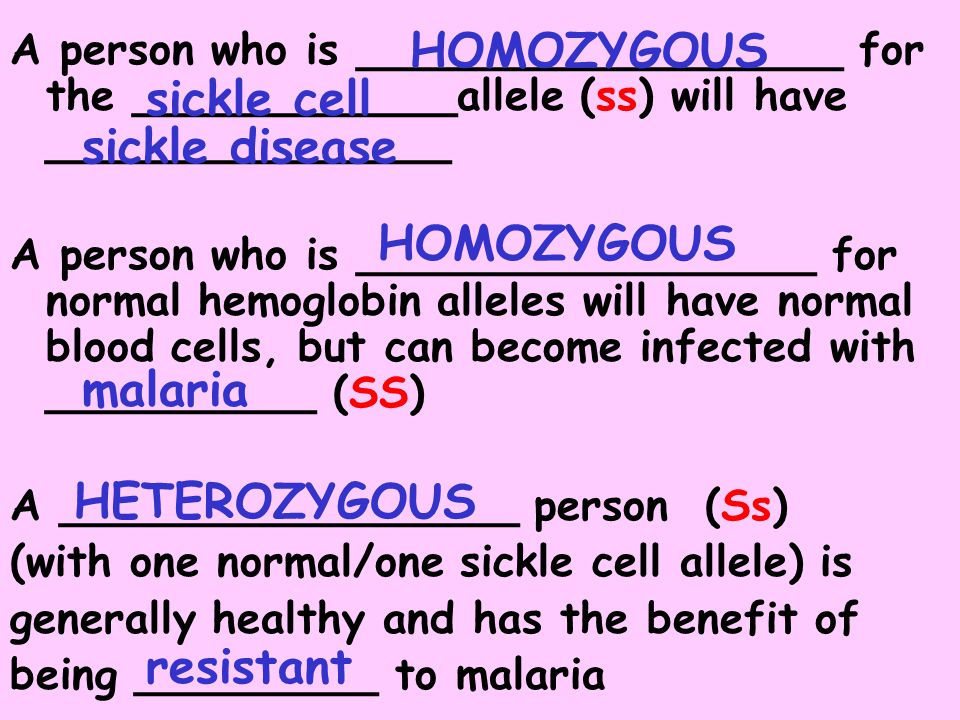 HOMOZYGOUS sickle cell sickle disease HOMOZYGOUS malaria HETEROZYGOUS