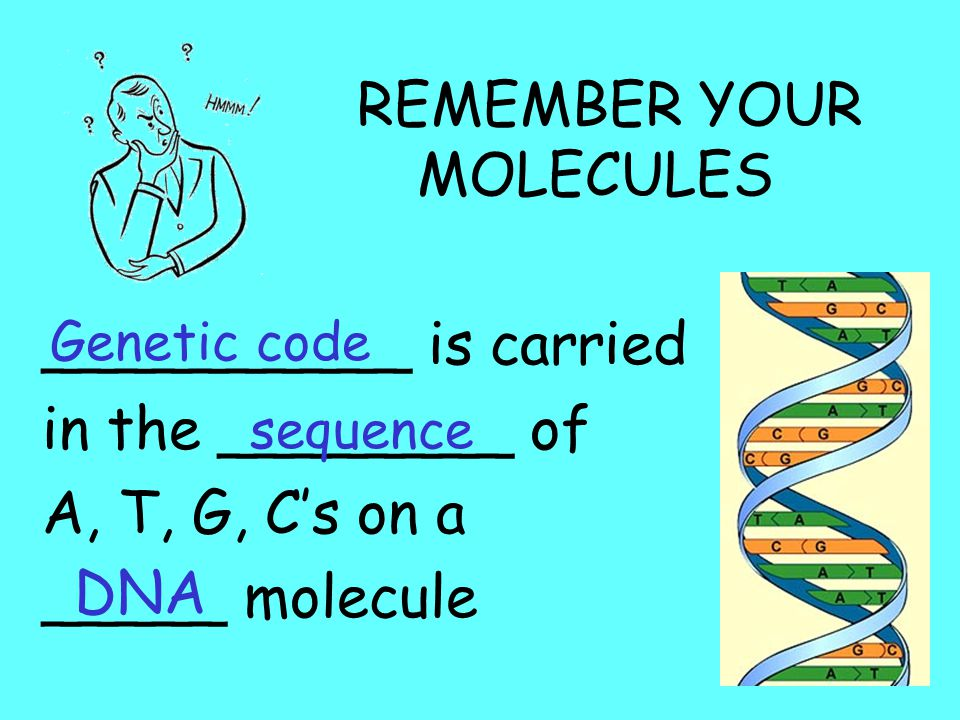 REMEMBER YOUR MOLECULES