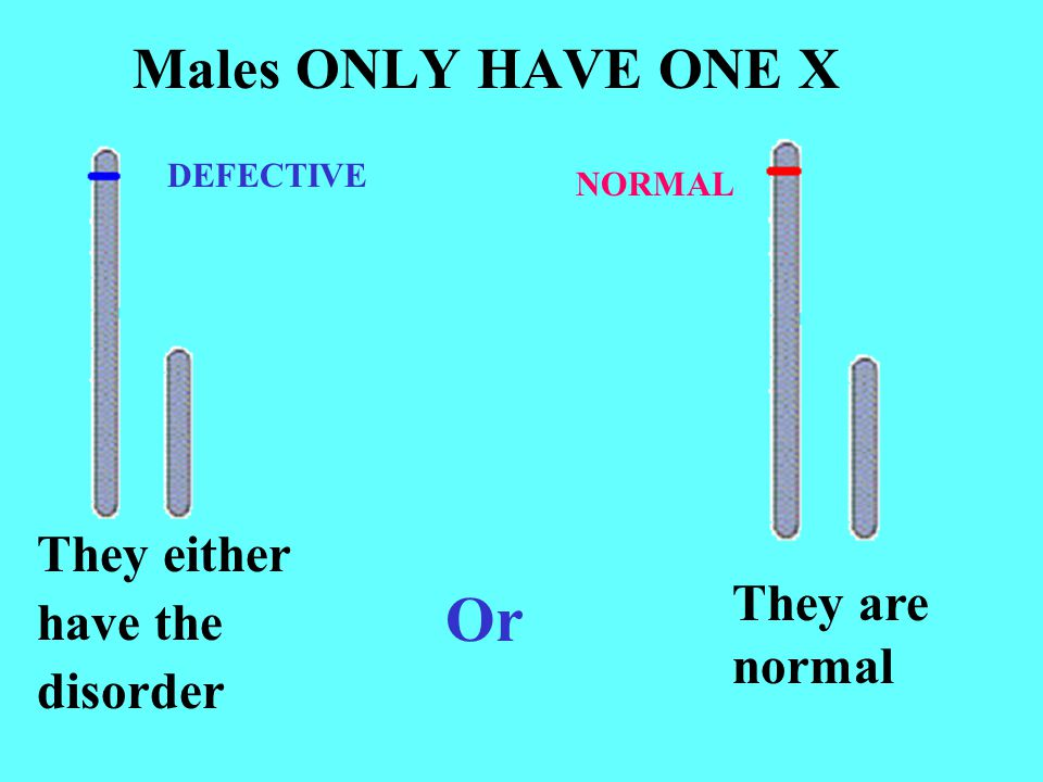 Or Males ONLY HAVE ONE X They either have the They are disorder normal