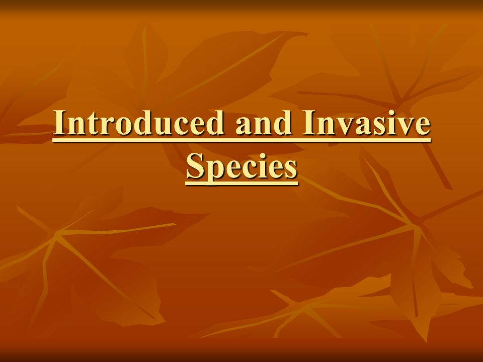 introduced and invasive species in the united states