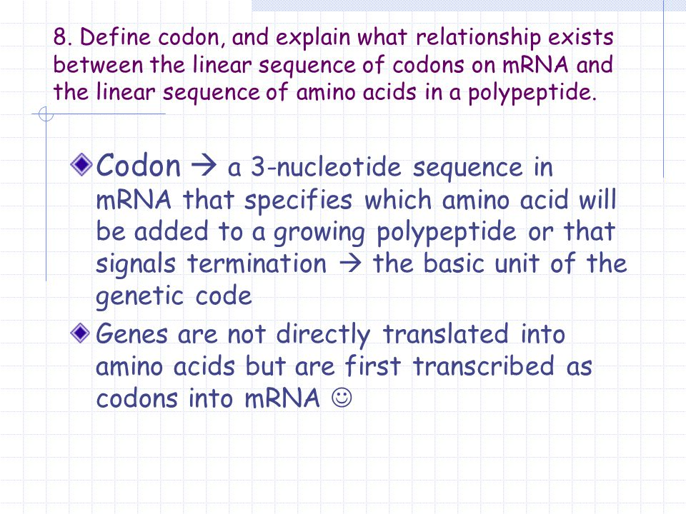 codon and amino acid relationship