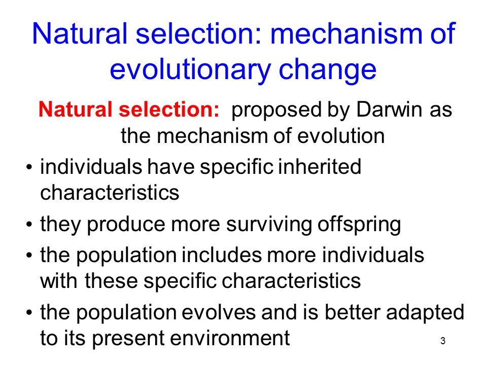 Inheritance Of Characteristics In Natural Selection