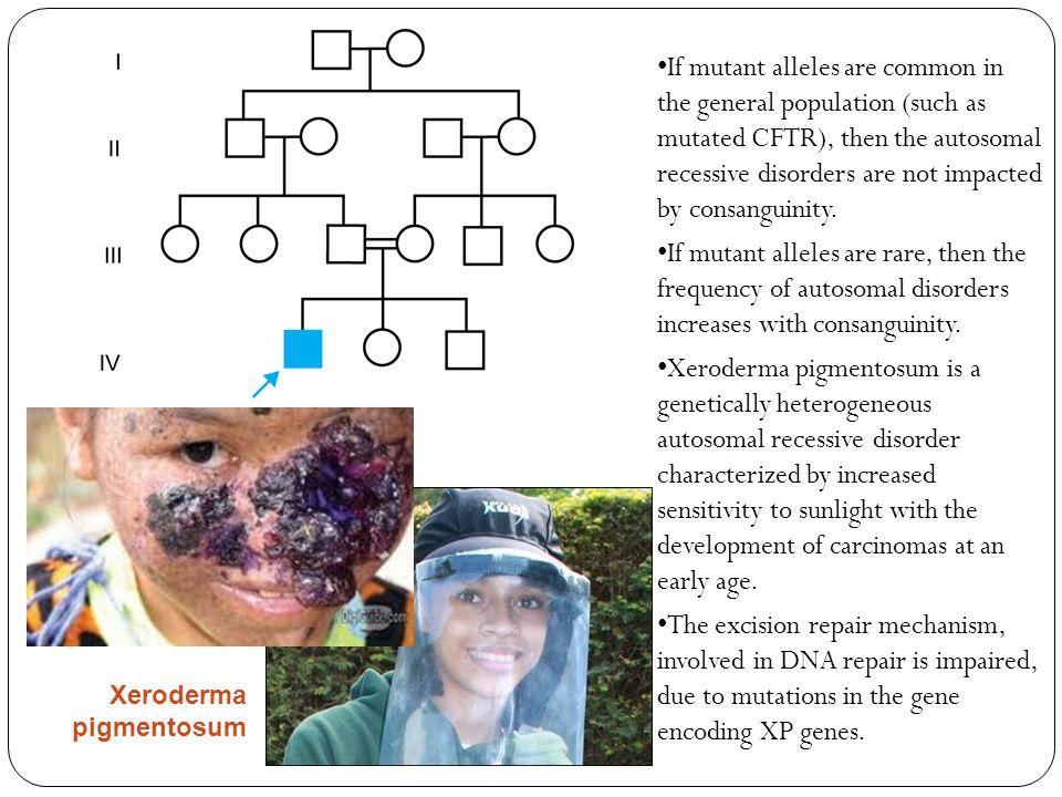 Transmission Genetics: The Principles of Segregation - ppt ...