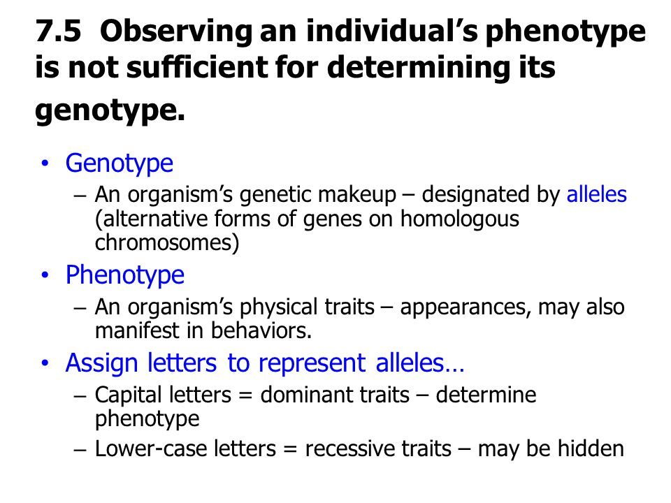 7.5 Observing an individual's phenotype is not sufficient for determining its genotype.